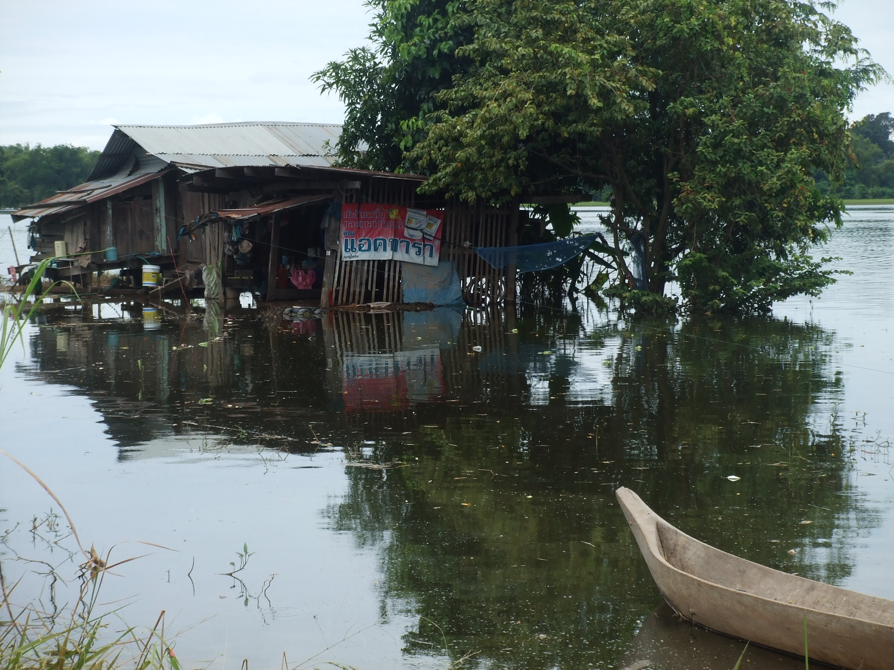 Global Adaptation Summit Aims at Building Resilience