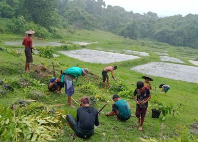 """""""Trees allow us to live,"""" says Myanmar CCWG and partners"""