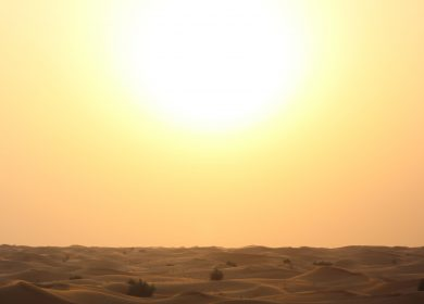2020 was one of three warmest years on record – WMO
